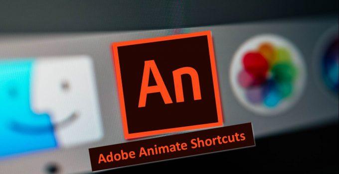 Adobe Animate CC Pro 20.2 Crack 2020 Torrent Serial Number Download