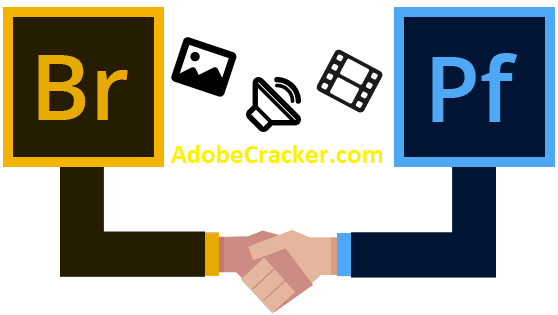 Adobe Bridge CC Crack Torrent Key [MAC + Win]