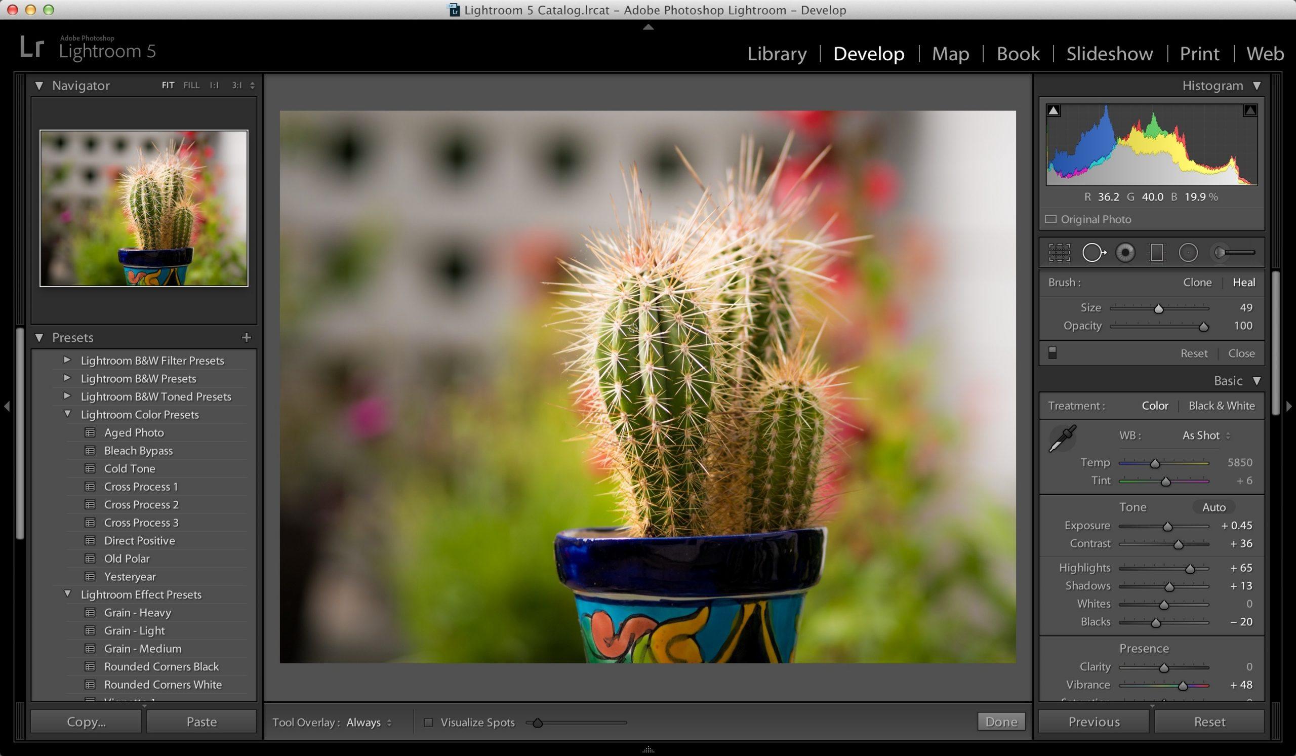 Adobe Lightroom CC Pro 2020 Crack