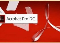Adobe Acrobat DC 2020.06.20042 Crack